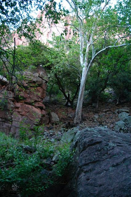 devils_canyon10
